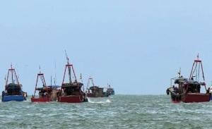 Vậy đảng lo lắng thế nào mà để hàng nghìn tàu đánh cá nước ngoài tung hoành trên lãnh hải Việt Nam